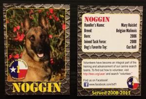 Noggin's card